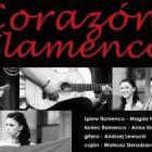 Magda Nawarette Flamenco - koncert w SDK
