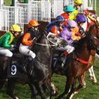 Rozpoczyna się sezon wyścigów konnych