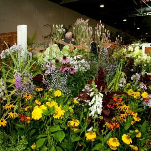 Ogłoszenia Ogrodnicze Mokotów Ogłoszenia Ogrodnicze